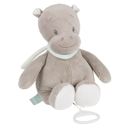 Musical Hippo