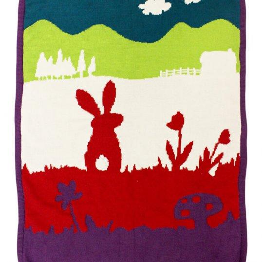 Baby-Bunny-Blanket.jpg